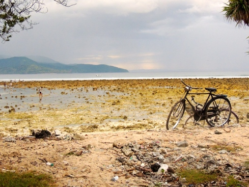 Low tide bicycle