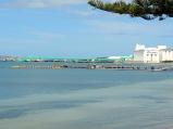 Port Lincoln Tuna Farms