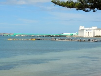Port Lincoln Tuna Farms