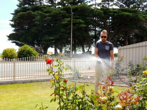 Wes watering flowers in the sun
