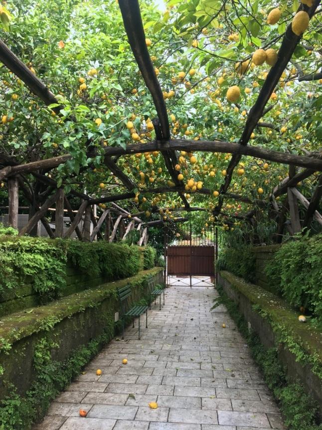 Giardini di Cataldo